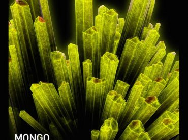 Exclusive Premiere – Mongo – Krypton (Born Electric)