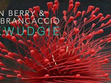 Exclusive Premiere: Simon Berry & Luke Brancaccio – Pukwudgie (Original Mix) Platipus