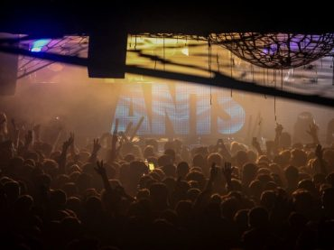 ANTS make Fabric debut on Friday 2nd November
