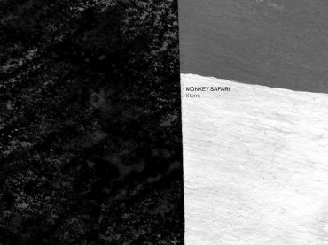 Exclusive Premiere: Monkey Safari – Sturm (Original Mix) Hommage