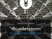 Zoo Brazil feat. Wolf and Moon – Thunderstorm (Dave Seaman Dub) Selador