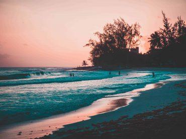 Paradise growing – Vujaday festival Announces 2019 lineup – Moodymann, Sasha, Danny Tenaglia, Octave One and more