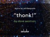 Exclusive Premiere: Dave Seaman – Thonk! (Selador)
