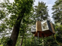 Sleep in a Danish forest canopy at the Lovtag Treetop Hotel