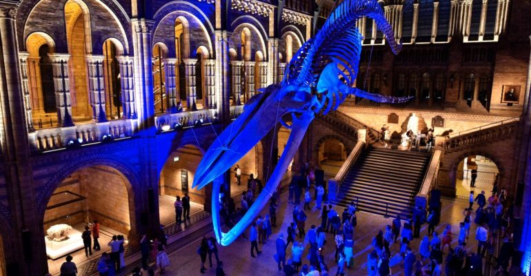 3 days of partying in over 40 of London's museums and art galleries